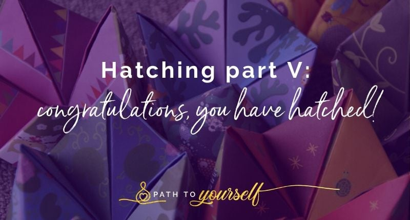 Hatching Part V Congratulations, You Have Hatched